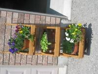 Garden 3 Tier Herb or Flower Stand