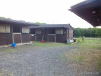 6 STABLES AND GRAZING AVAILABLE PLUS TACK ROOM/FEED STORE .DETLING AREA.