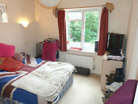Beautiful 1 bedroom coachhouse with private garden in Highgate