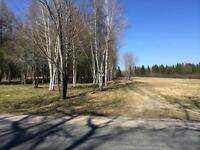 6 acres 1.5kms from City limits