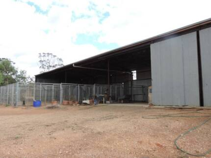 Dog Kennels + 1920's Federation Style Home on 30 acres Charlton Buloke Area Preview