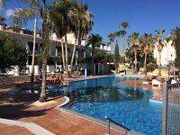 cyprus ayia napa / Napa Rocks Hotel