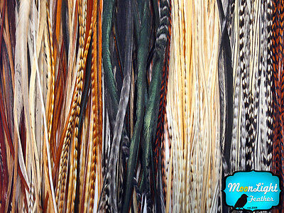 100 Pieces - Wholesale Natural Thin Long Rooster Hair Extension Feathers (bulk) - Bulk Feathers