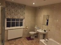 LARGE DOUBLE ROOM TO LET IN DUNSTABLE TC ALL BILLS INCLUDED