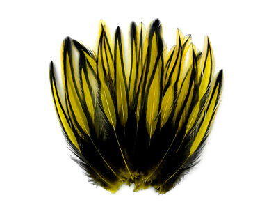 10 Pieces - Yellow Dyed BLW Laced Long Rooster Cape Whiting Farms Feathers Craft