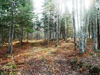 VARIOUS ACREAGES AVAILABLE IN MIDLAND, DISCOVERY LANE