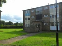 1 bedroom flat in Ironside Walk, Sheffield S14