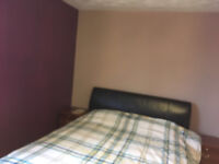 Double ensuite spacious room to rent in a lovely, clean & friendly house