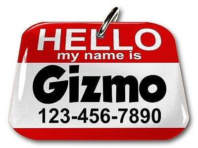 Rectangle Name Tags - Hello My Name Is Red rectangle dog cat charm custom pet tag by ID4PET