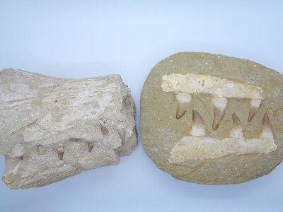 Natural (left) vs Composite (right)