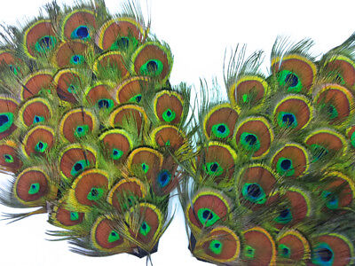 1 Piece - Natural Peacock Tiny Eyes Feather Pad Wedding Costume Halloween Craft Peacock Feathers Wedding