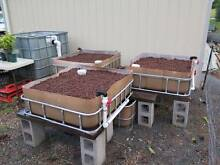 Aquaponics System - 3 grow beds, 1000lt tank, sump, auto-siphon Beechmont Ipswich South Preview