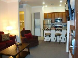 Palm Springs-La Quinta1BR:Brand New Upgrade Resort Luxury Condo,