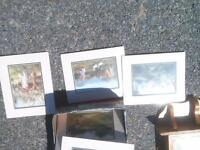 various pictures $10 or less