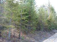 REDUCED Great Building Lot  Christina Lake