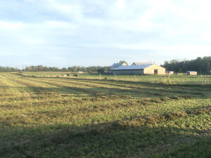 AMAZING PRIVATE HORSE FARM FOR SALE London Ontario image 1