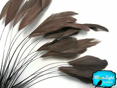 1 Dozen - BROWN Stripped Rooster Coque Tail Feathers Craft Party - Craft Suppliers
