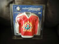 Brand New Team Canada Mini Jersey