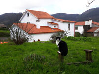 For sale: Large refurbished country house close to the coast in unspoilt Northern Spain