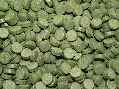 100 x Green Sticky Tablets - Catfish, Herbivore Fish Food