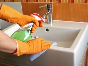 Local Commercial Cleaning Service - Great Rates ! Free Quotes ! Stratford Kitchener Area image 1