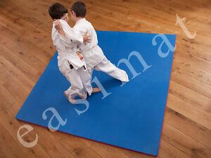 Mma Martial Arts Karate Judo Kick Boxing 20mm Thick Gym