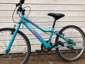 Girls 8-12 Blue Bike