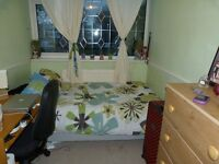Nice single room in good location close to Canary Wharf and city