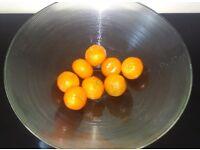 Lovely Large Glass Bowl, Fruit, Salads or Decorative Use