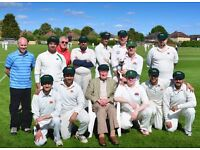 LWCC - Surrey Cricket League - Players Needed