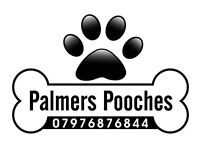 Palmers pooches, Dog Walking Boarding and Doggy Day Care * Taking on New Clients SEPTEMBER*