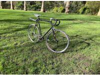 Single Speed Bike - L/XL