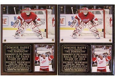 Dominik Hasek 2014 Hall of Fame Detroit Red Wings Stanley Cup Champ Photo Plaque (Wings Plaque)