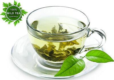 THE BEST WILD GREEN TEA FOR NATURAL WEIGHT LOSS GRADE A1+ 100% WILD