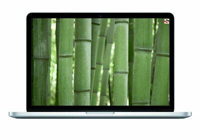 "Apple MacBook Pro Retina Core i5 2.4GHz 4GB 128GB SSD 13.3"" Get any OS X  segunda mano  Embacar hacia Argentina"