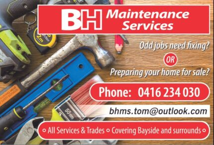 Painter, handyman, Maintenance services, No job too small