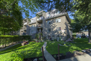 1 Bdrm available at 2507 Montarville Street, Longueuil