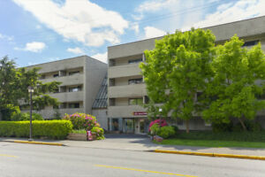 1 Bdrm available at 8200 Park Road Suite 114, Richmond