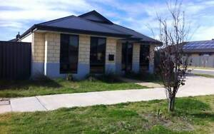 IDEAL ALMOST NEW FAMILY HOME - FIRST WEEKS RENT FREE! West Swan Swan Area Preview