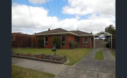Room for rent in Noble park North