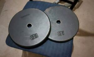 Two 25 lb weight plates for 1 inch bar