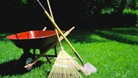 YARD WORK your price ( summer only!)