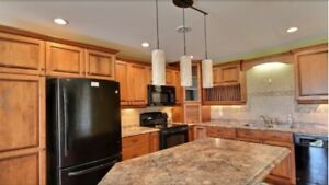EVERYTHING INCLUDED!  High-End 2 BR basement suite