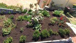 Landscaping/reticulation