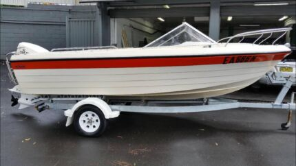 17ft Windsor Monark, 2004 model 100HP Evinrude Motor, 2nd Owner! Kellyville Ridge Blacktown Area Preview