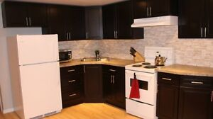 Two bedroom basement suite...prime mountain location!!