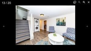 $1150 All-inclusive 2 bedroom basement apartment for rent
