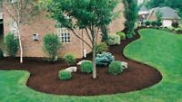 Landscaping, property Clean Up, Garden Work, Sod, Mulch and More