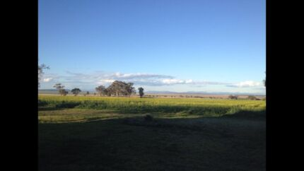 Backpacker couple wanted - farmhand & stablehand/au pair Spring Ridge Liverpool Plains Preview