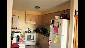 Big room in basement available in all female house